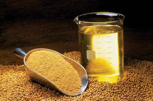 Dầu đậu tương tăng hơn 4%, vượt lên vùng giá cao nhất mọi thời đại