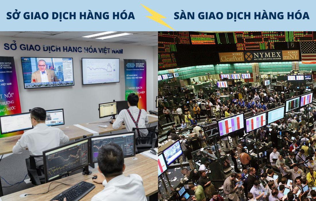 Phân biệt Sở giao dịch Hàng hóa và Sàn giao dịch Hàng hóa