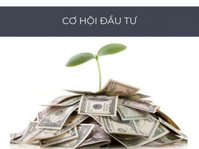 cơ hội đầu tư