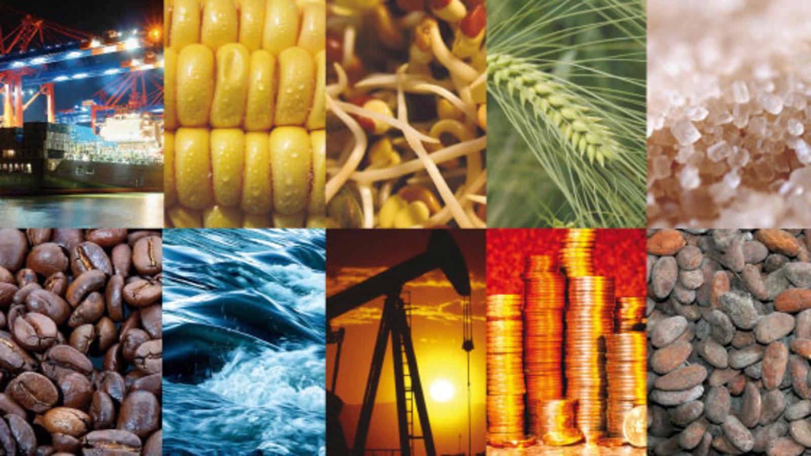 Thị trường hàng hoá Việt Nam hiện nay