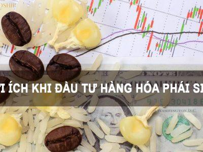 Lợi ích khi đầu tư hàng hóa phái sinh