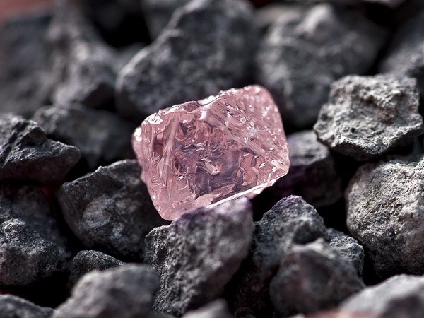 Giá quặng sắt