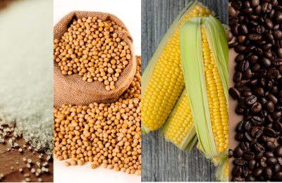Thời tiết khô hạn ở Brazil tác động tới giá nông sản và nguyên liệu như thế nào?