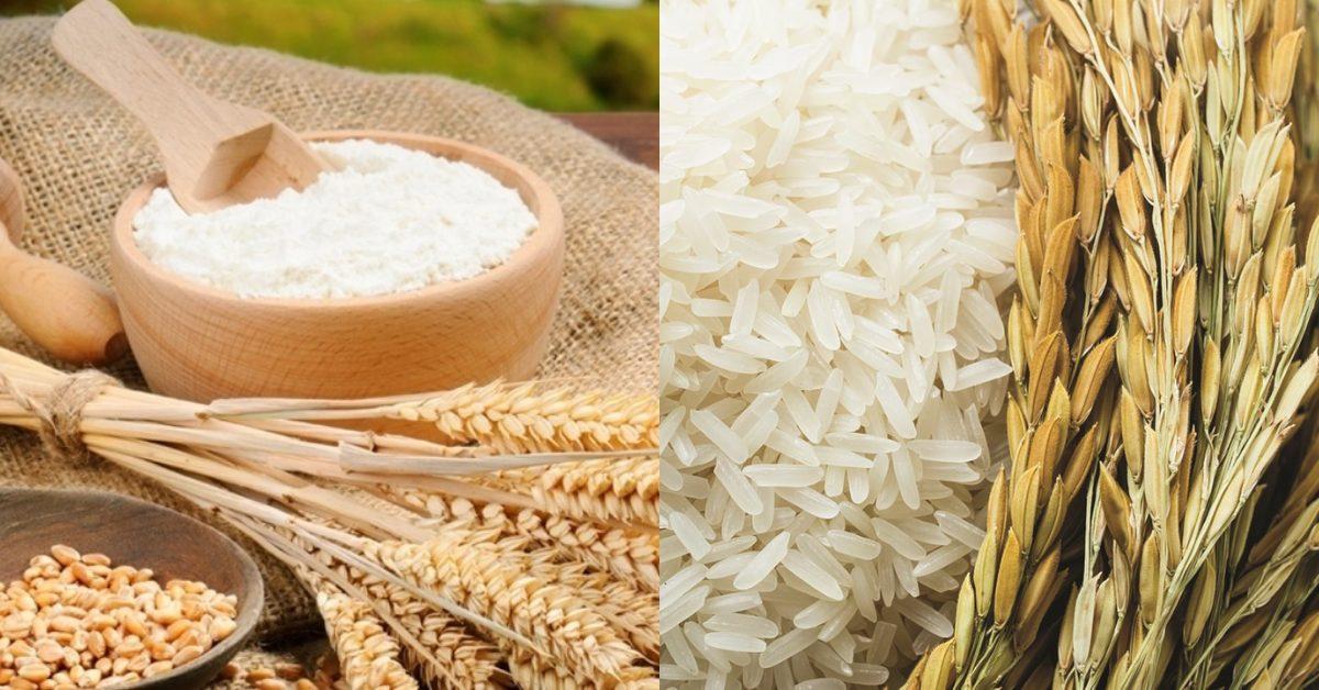 Giao dịch thêm 2 mặt hàng mới là Gạo thô và Lúa mỳ Kansas trên thị trường hàng hóa Việt Nam