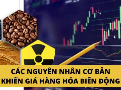 Các nguyên nhân cơ bản khiến giá hàng hóa biến động