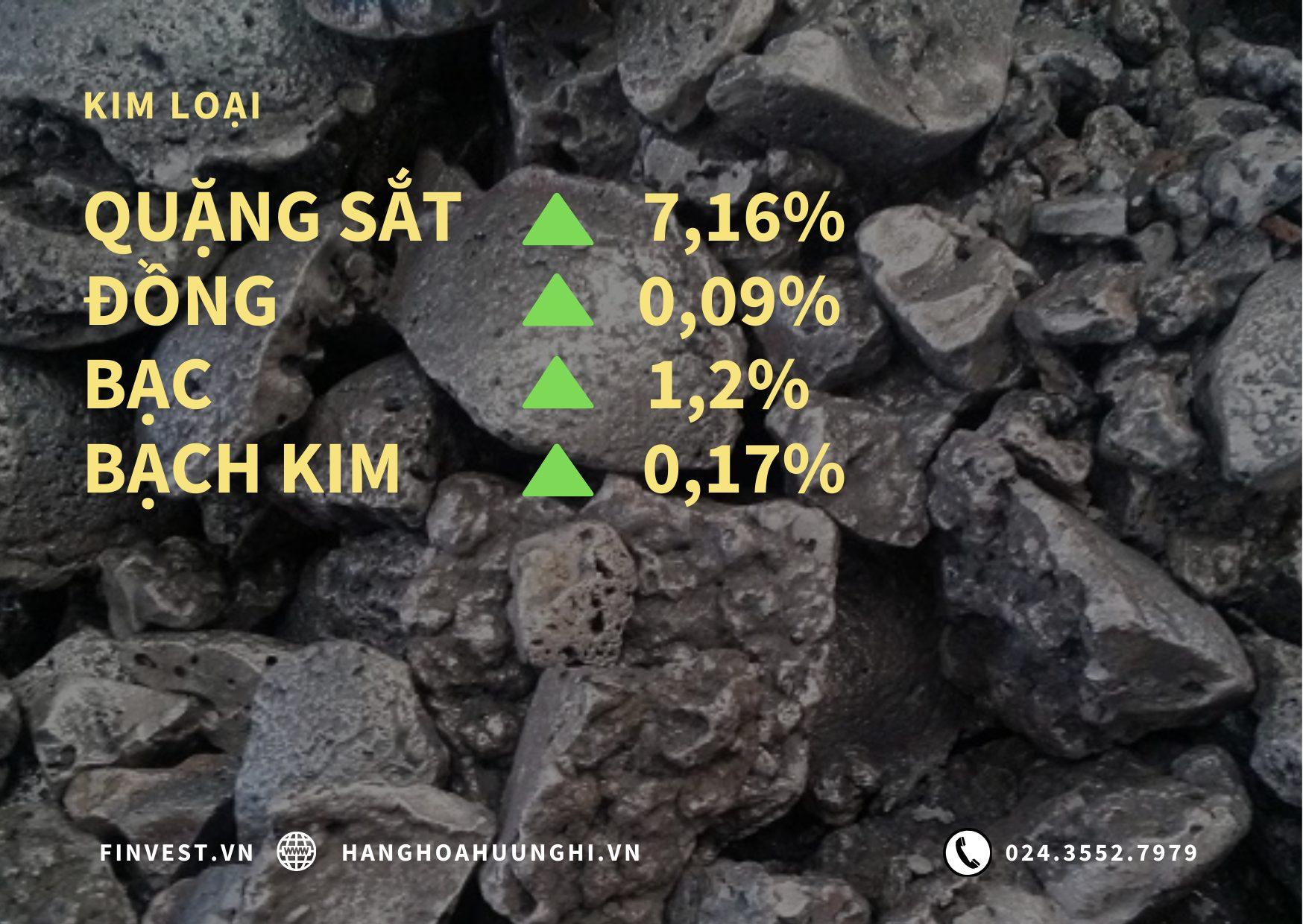 Các nhà đầu tư đang tích cực mua vào quặng sắt nhằm bắt đáy